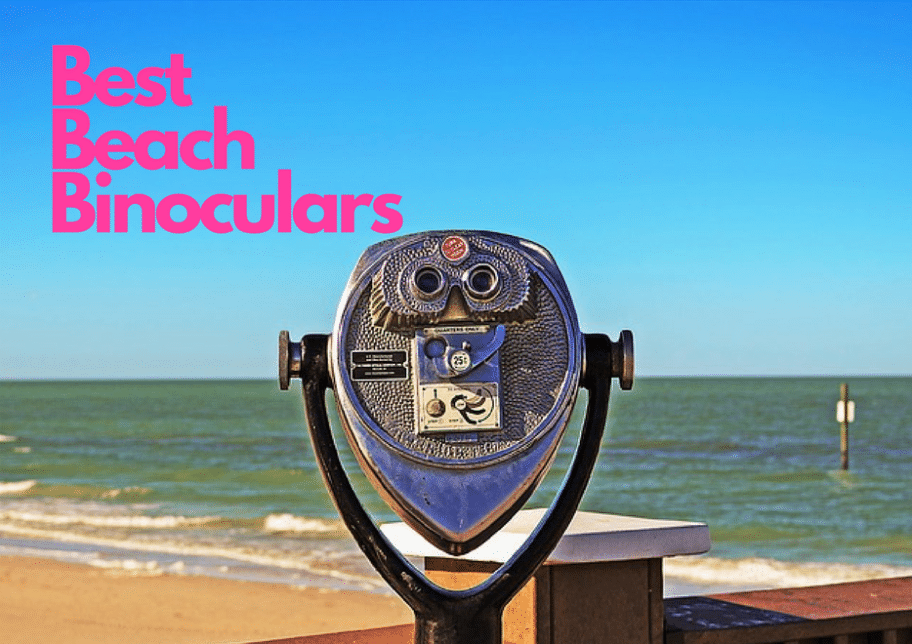 best beach binoculars for the beach whale watching dolphins seabirds