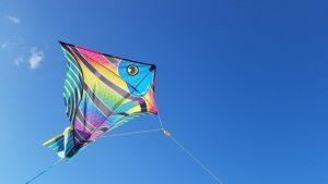 best stunt kite for the beach