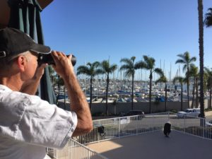 best binoculars for whale watching from beach