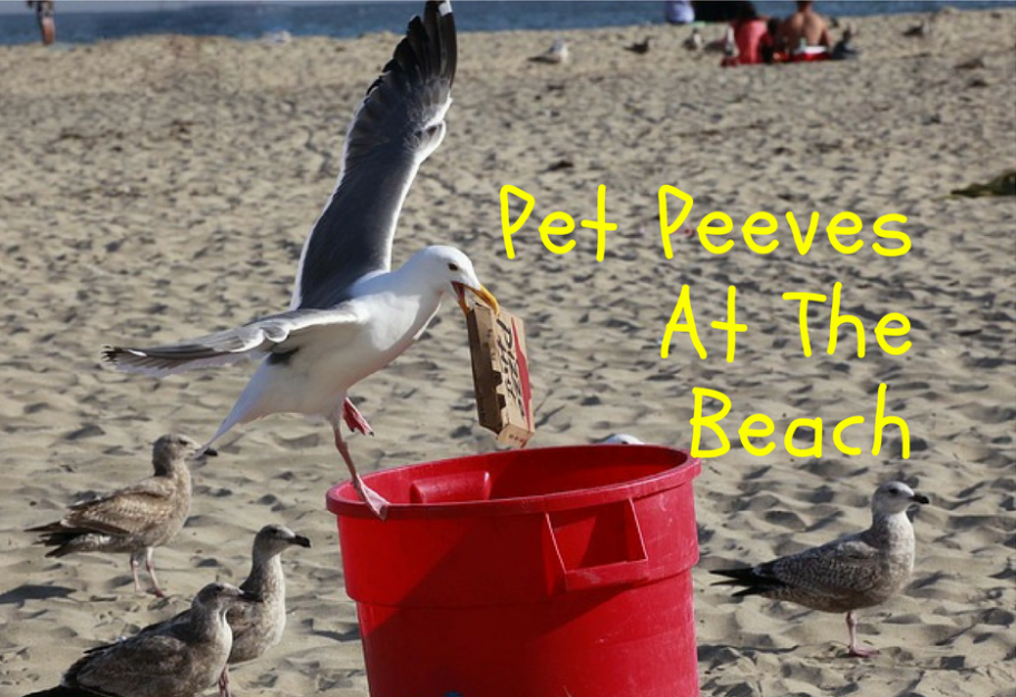 pet peeves at the beach