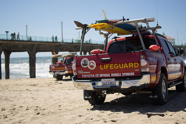 what is a beach lifeguard