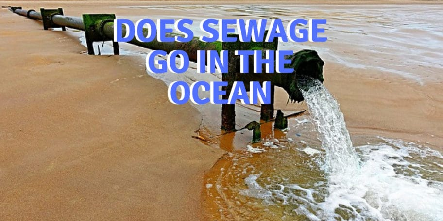 Does sewage go in the ocean