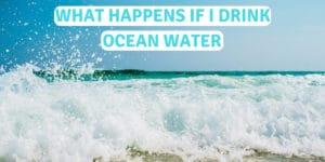 what will happen if I drink ocean water